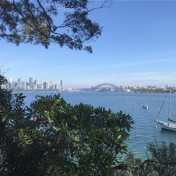 Taronga to Georges Head Guided Walking Tour Review